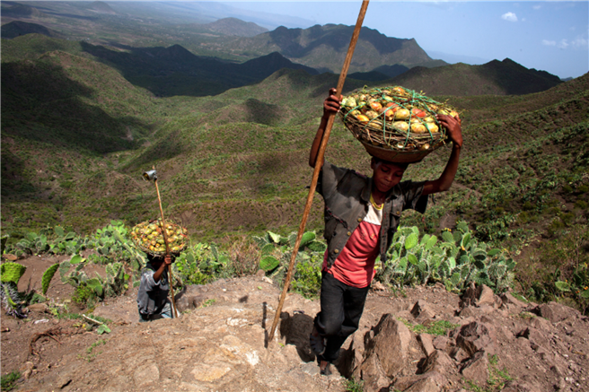 Das Gewinnergesetz aus der äthiopischen Tigray Region: Conservation-Based Agricultural Development-Led Industrialization (1994), supported by Mass Mobilization Campaigns (1991) and the Youth Responsive Land Policy (2008) © TerrAfrica Partnership at NEPAD Agency