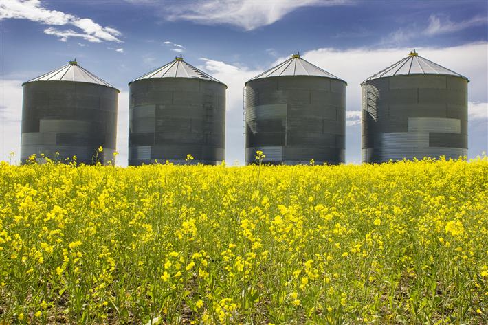 Mehr Schutz von Klima, Gewässerqualität und Biodiversität in der Landnutzung könnte gesellschaftlichen Nutzen in Höhe von bis zu sechs Milliarden Euro erzielen. © ramoncliff, pixabay
